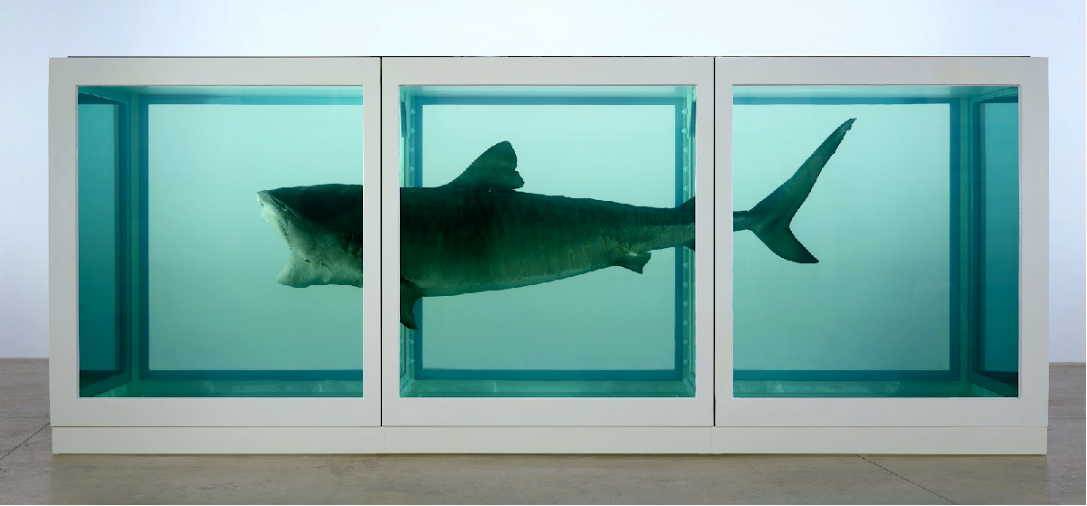 Damien Hirst, The Physical Impossibility of Death in the Mind of Something Living, 1991. Glass and steel. Metropolitan Museum of Art, New York.