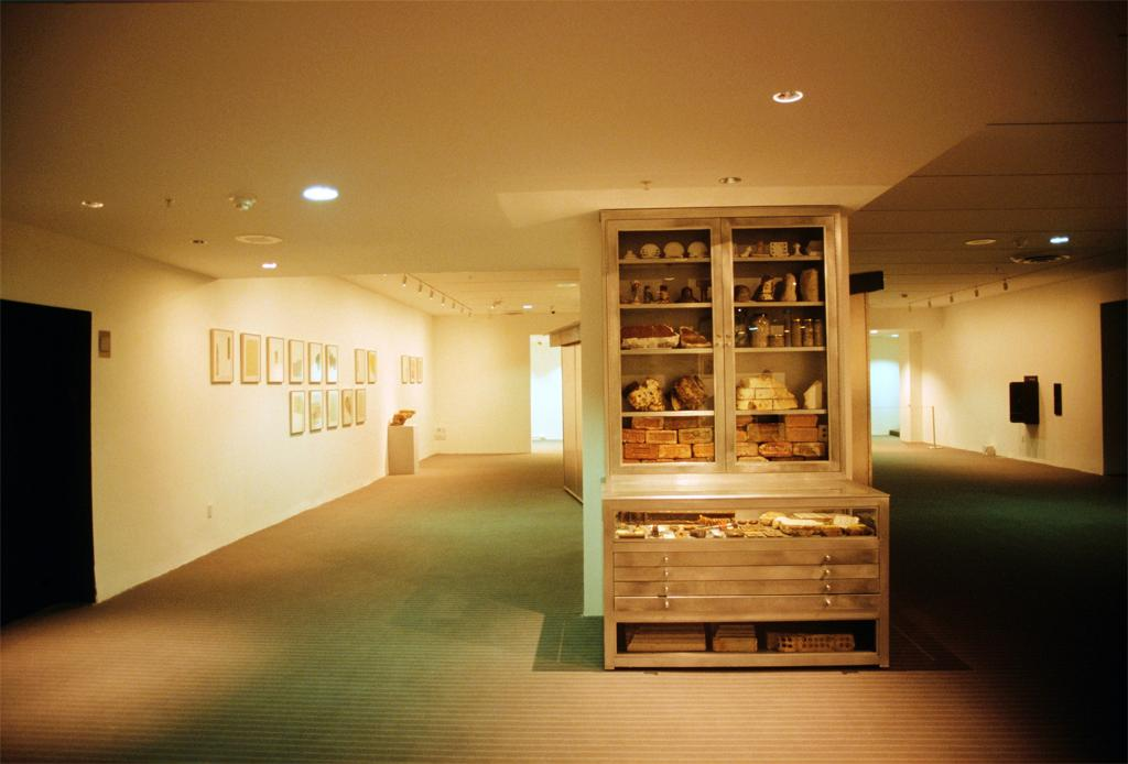 Mark Dion, Rescue Archaeology: A Project for the Museum of Modern Art, 2004. Science, Technology and Industry. Exhibited at the Museum of Modern Art, New York.